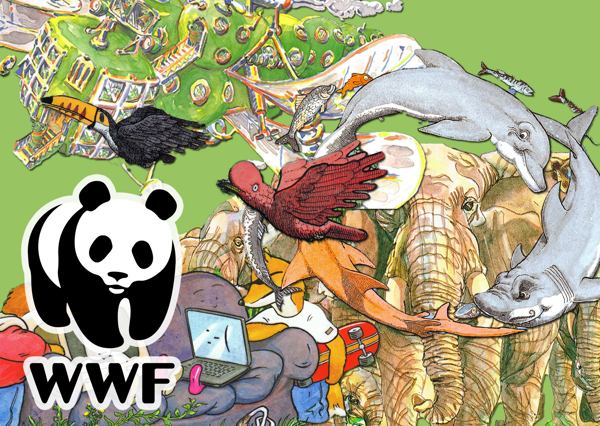 WWF Bundle
