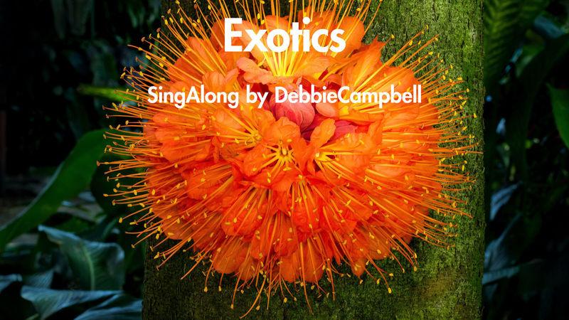 Picture of Exotics